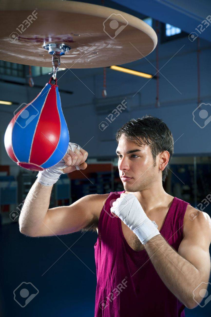 Young Adult Man Hitting Speed Bag In Gym. Copy Space Stock Photo ... 5b72680b2e