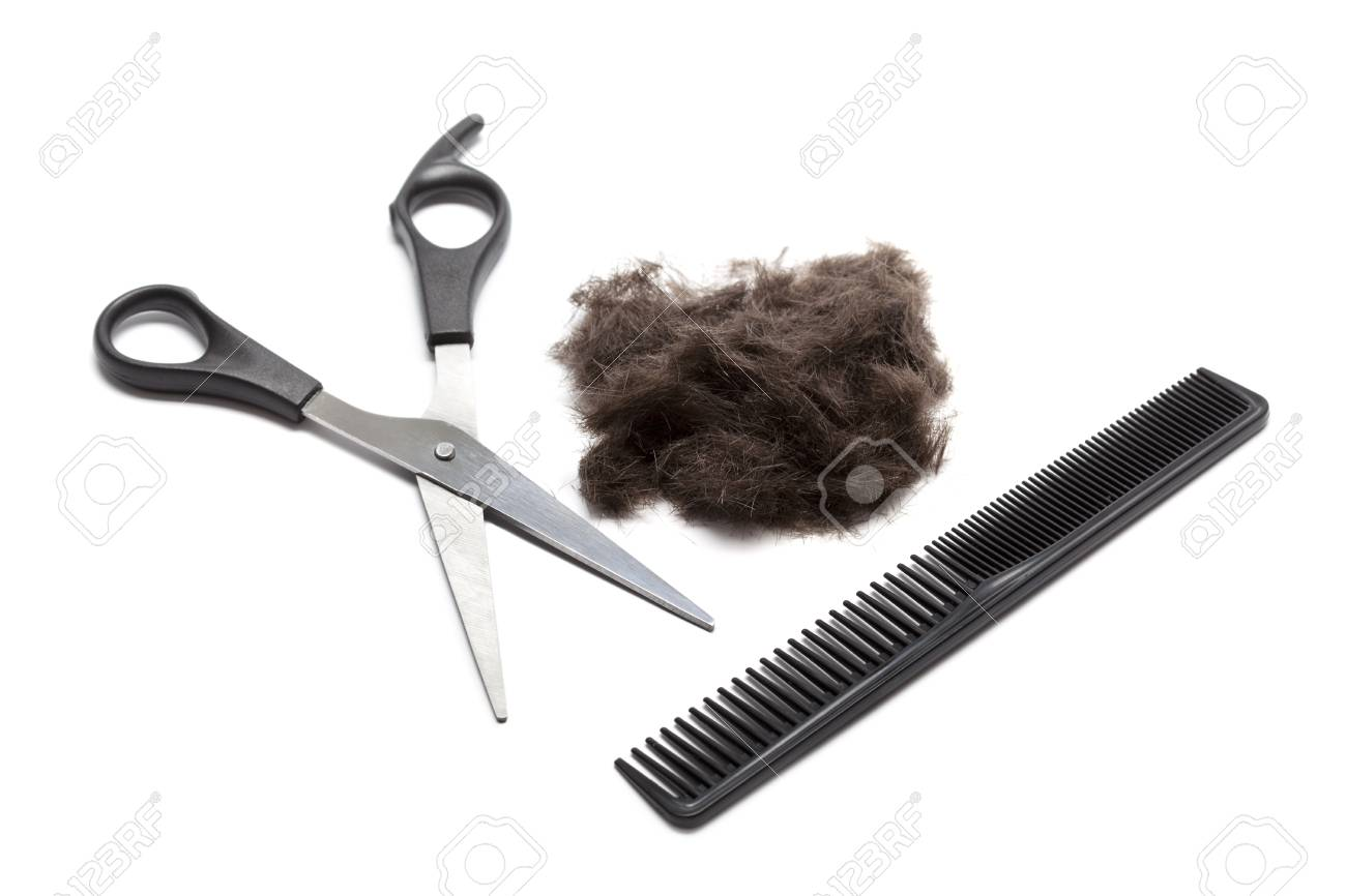 Hair Cutting Supplies Stock Photo Picture And Royalty Free Image Image 10561551