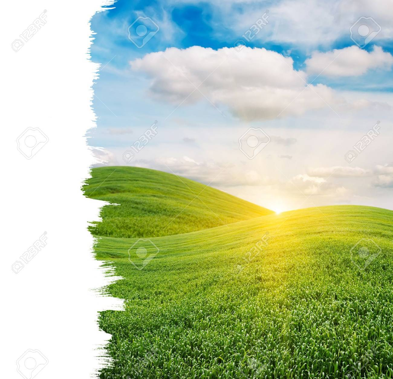 Beautiful Sunrise over Green Field with Copy Space Stock Photo - 11015917