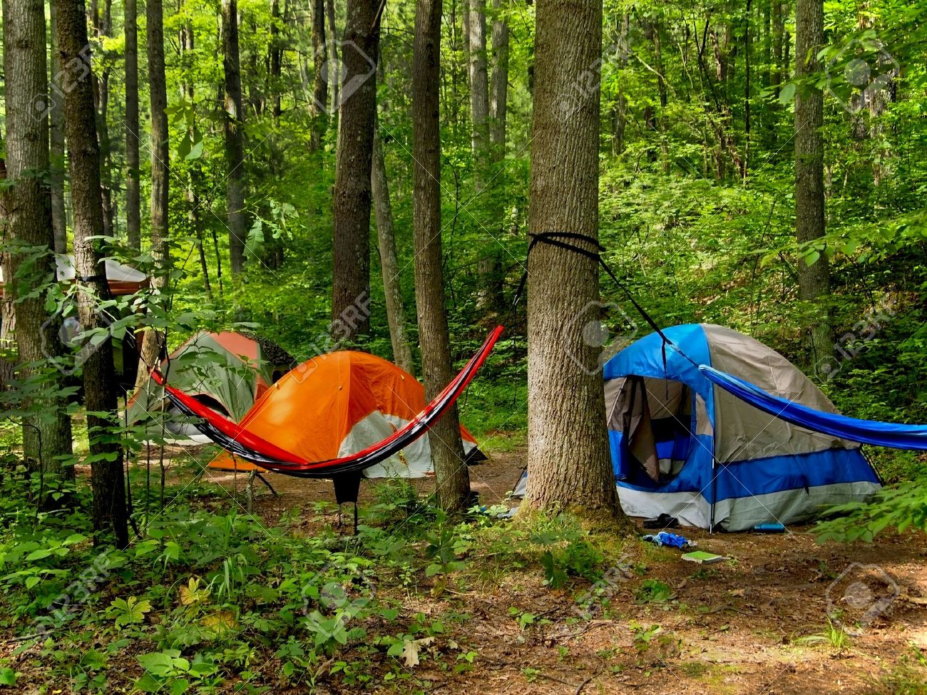 A small grouping of tents and a hammock slung between two trees out in the wilderness & A Small Grouping Of Tents And A Hammock Slung Between Two Trees ...