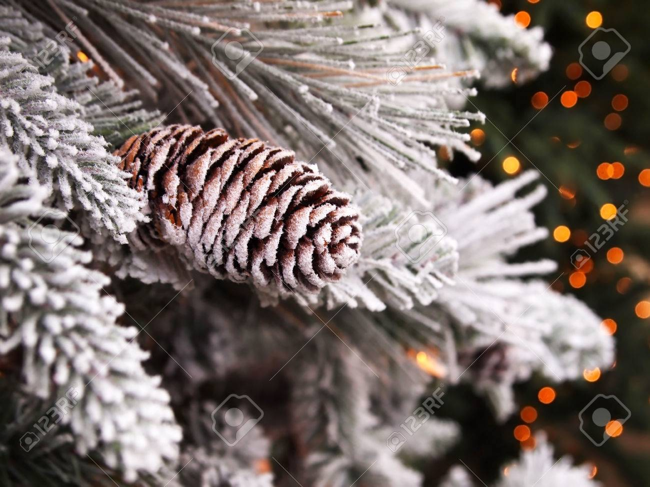 A snowy pinecone decorated Christmas tree, with bokeh lights in the background. Stock Photo - 23217479