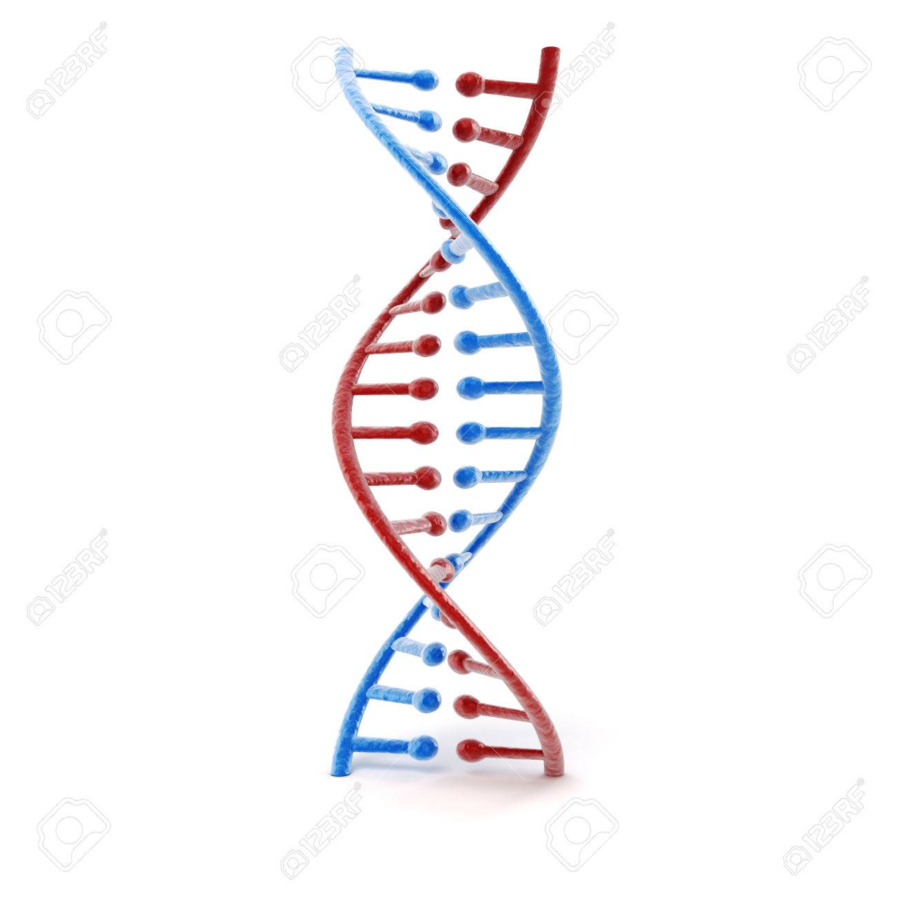 3d render of dna structure abstract background stock photo picture 3d render of dna structure abstract background stock photo 28063513 ccuart Image collections
