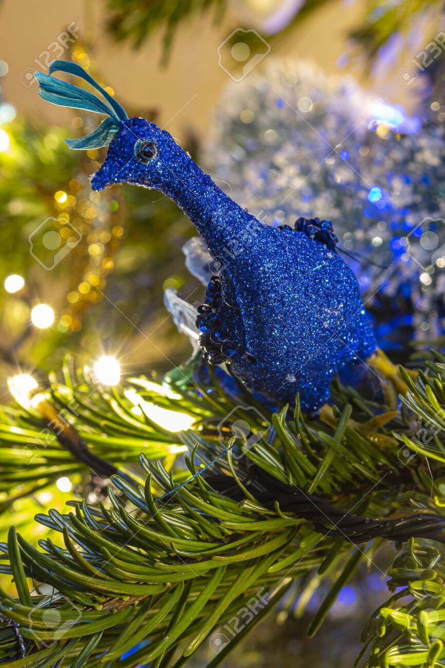Beautiful Ornament Blue Peacock In The Tree Netherlands Stock Photo Picture And Royalty Free Image Image 150941499