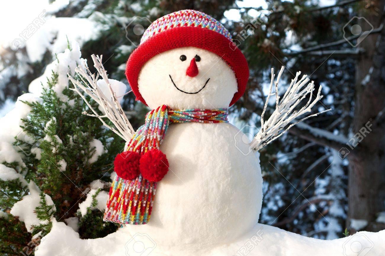 Snowman - 8371559