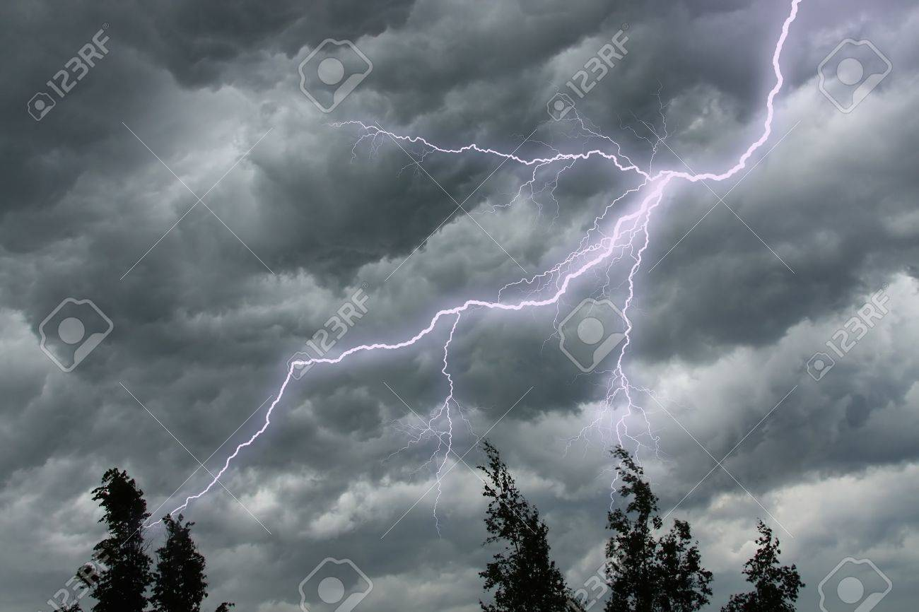 The lighting in dark stormy clouds and tree tops - 7277767