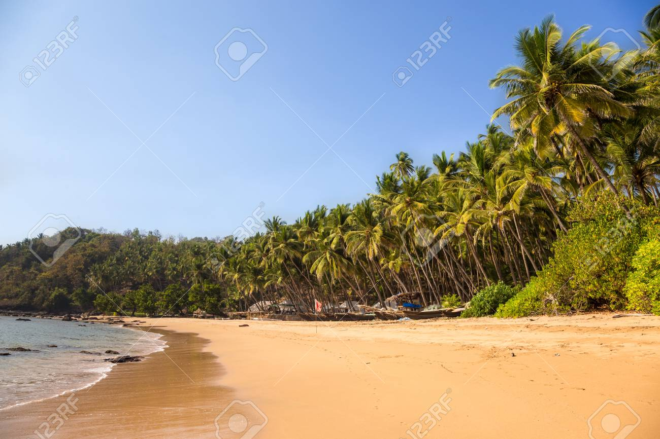 Tropical beach with a row of fishing boats and palm trees - 115409161
