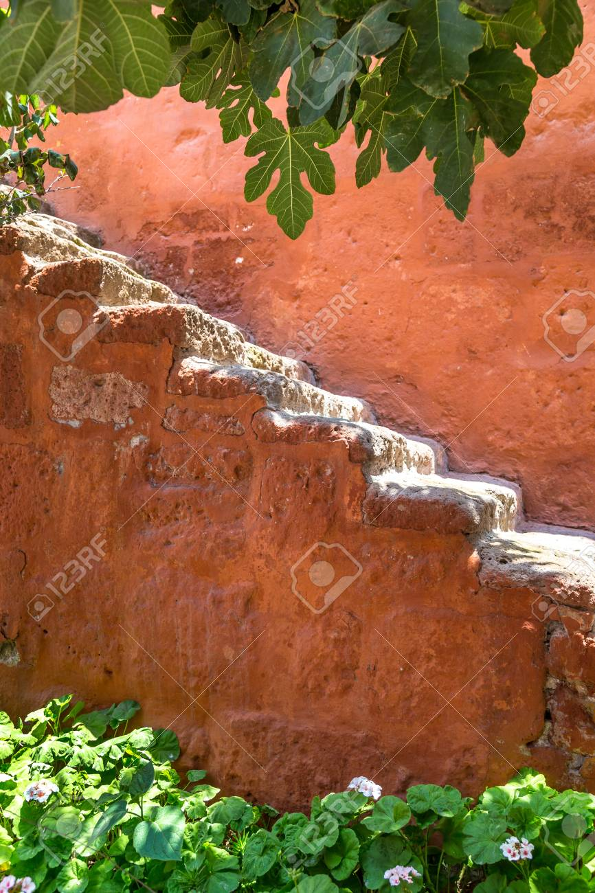 Steps on the wall of a garden - 115409280