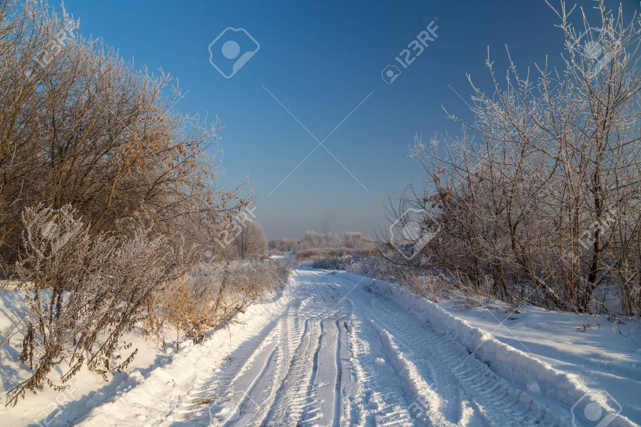 Snowy road across countryside. Hoarfrost on tree branches on a sunny winter day - 115409675