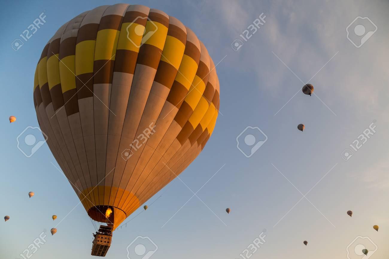 Hot air balloons flying at sunrise - 115409740