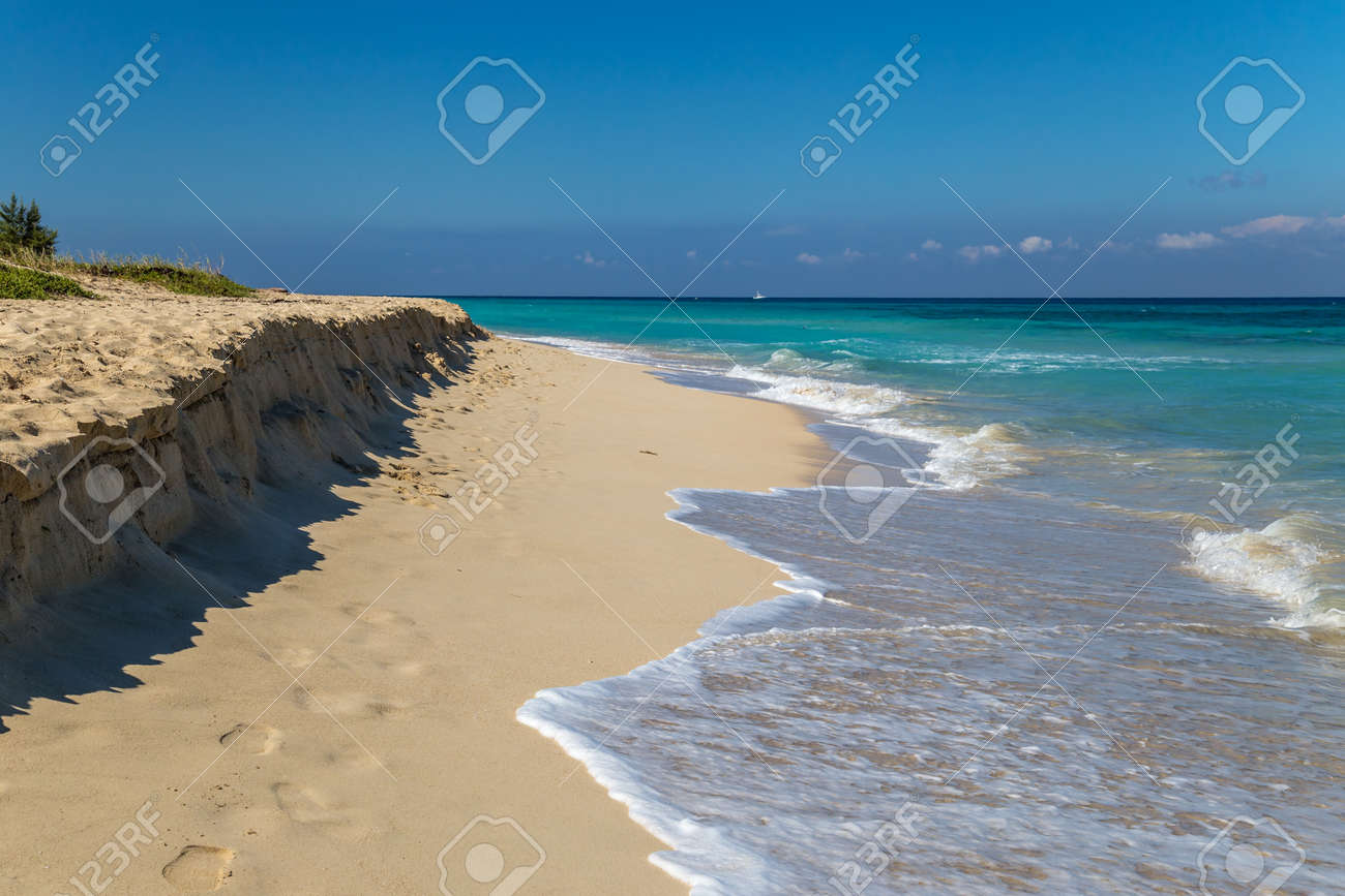 White sand beach on a tropical island - 116426802