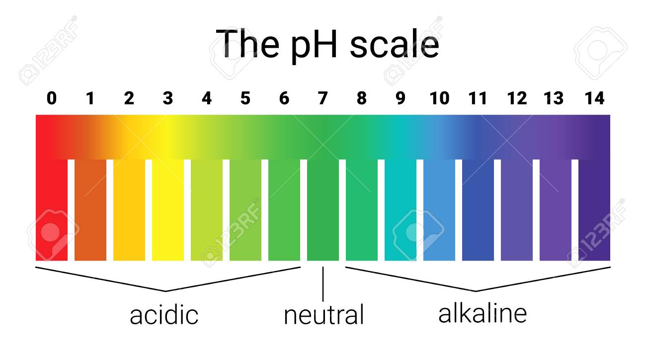 Ph Scale. Infographic Acid-base Balance. Scale For Chemical ... for Ph Scale Acids And Bases  83fiz