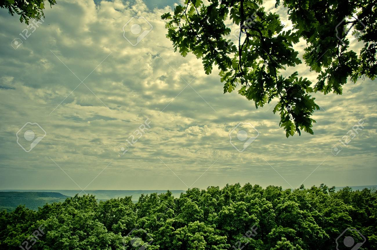 Summer landscape with dramatic cloudy sky Stock Photo - 24287822
