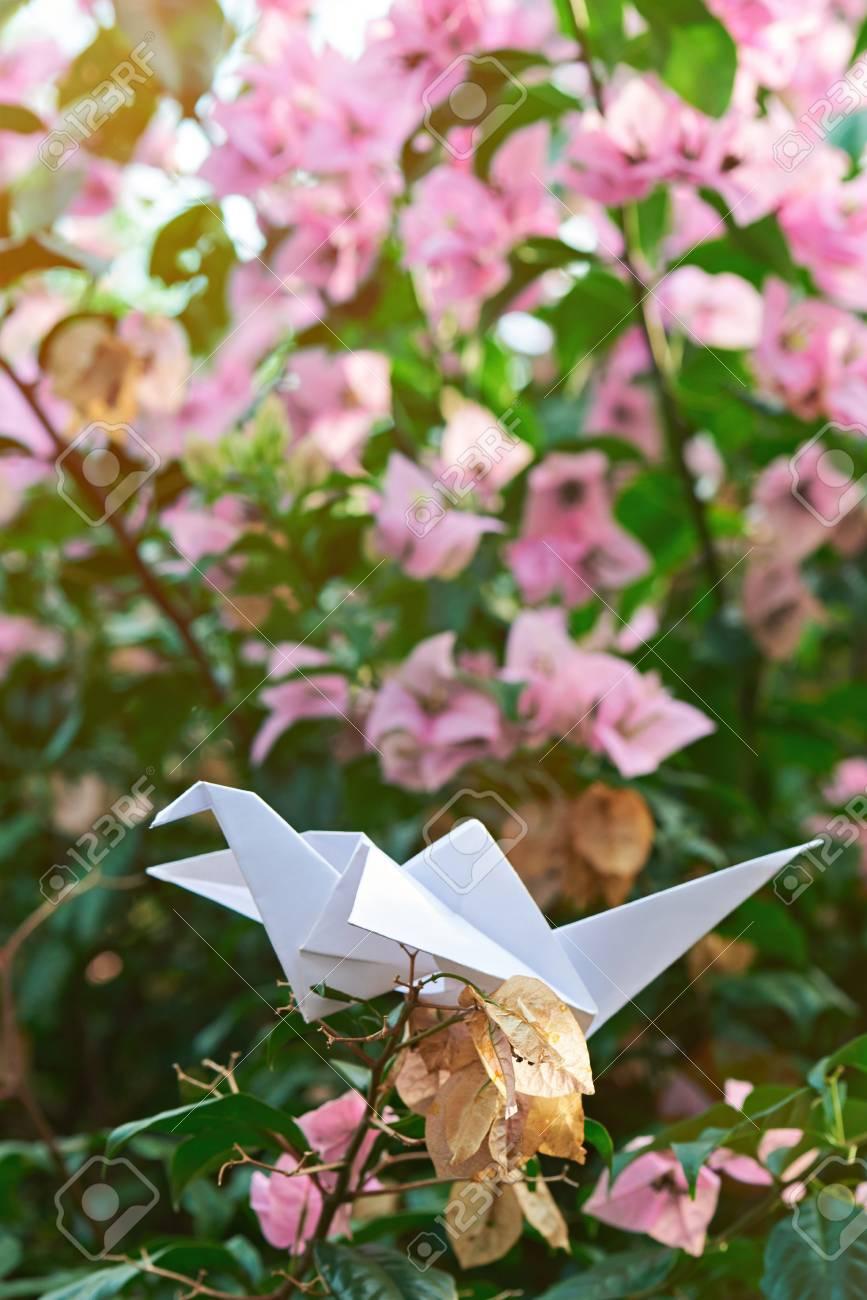Paper White Crane Sit On Dead Flower Blurred Background Stock Photo