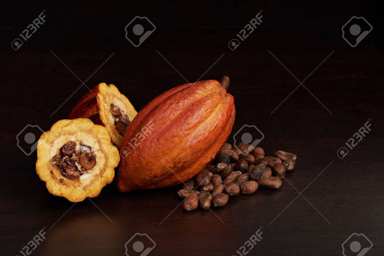 Cacao farmer harvest fruits background. Natural cocoa fruit - 81603621