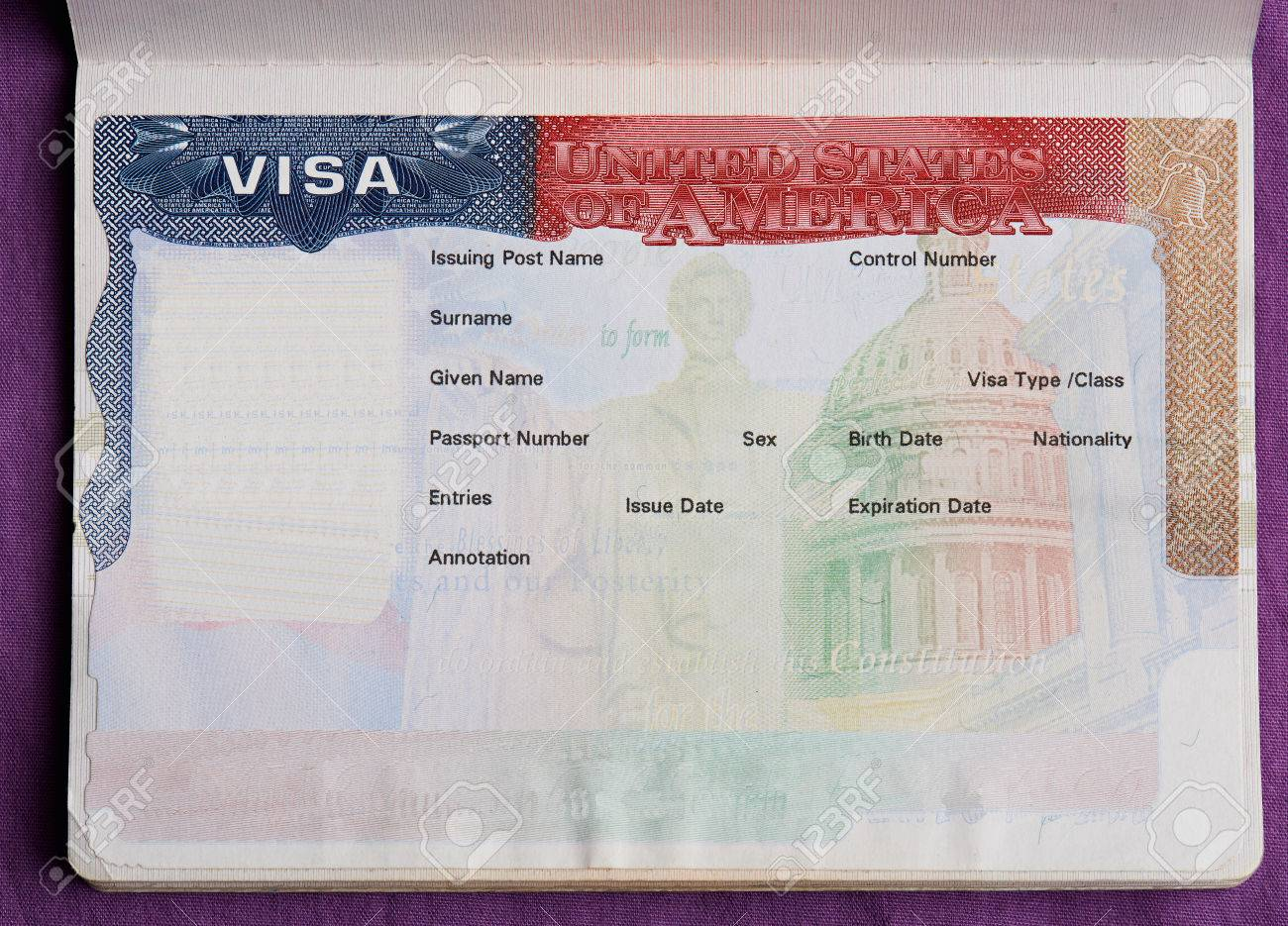 Blank american visa in passport page. Empty visa to enter United state of america - 84391836