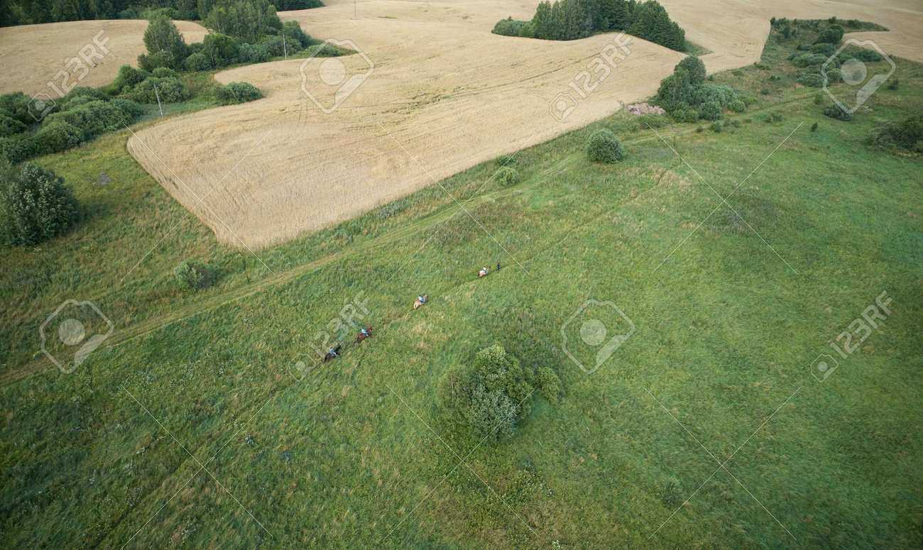 Horse ride in wild landscape aerial above view - 172044759