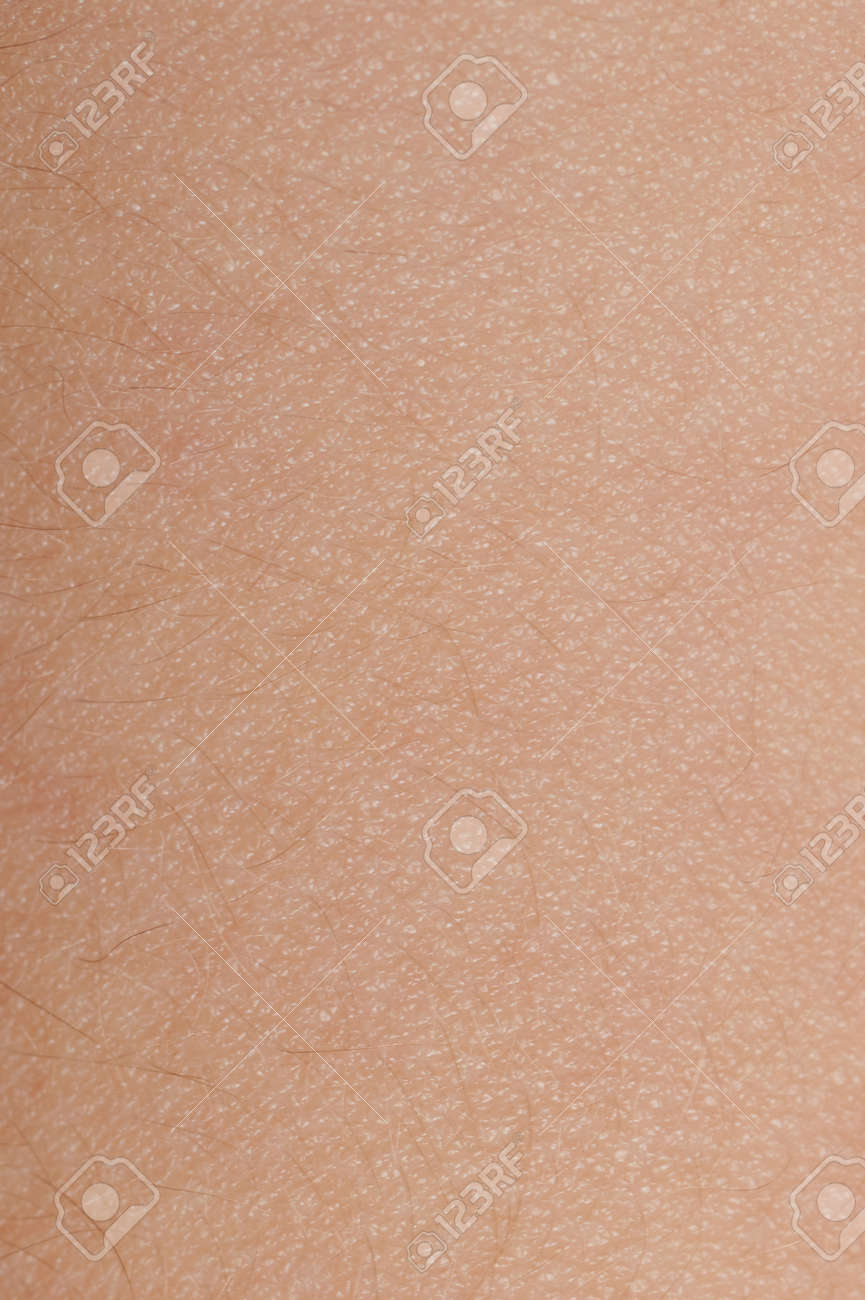Brown skin texture with tiny hair background close up view - 171991120