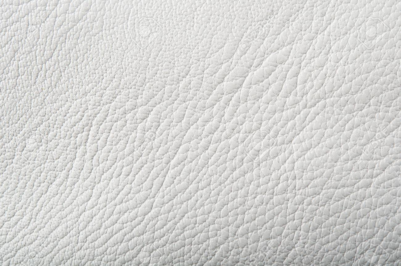 https://previews.123rf.com/images/dimasobko/dimasobko1205/dimasobko120500403/13509389-photo-of-white-leather-background.jpg