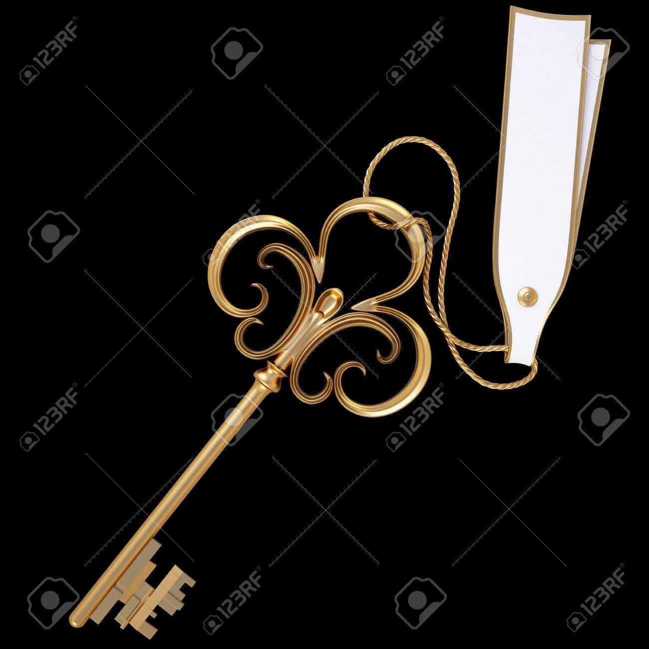 antique golden key with blank card. isolated on black. Stock Photo - 8714104