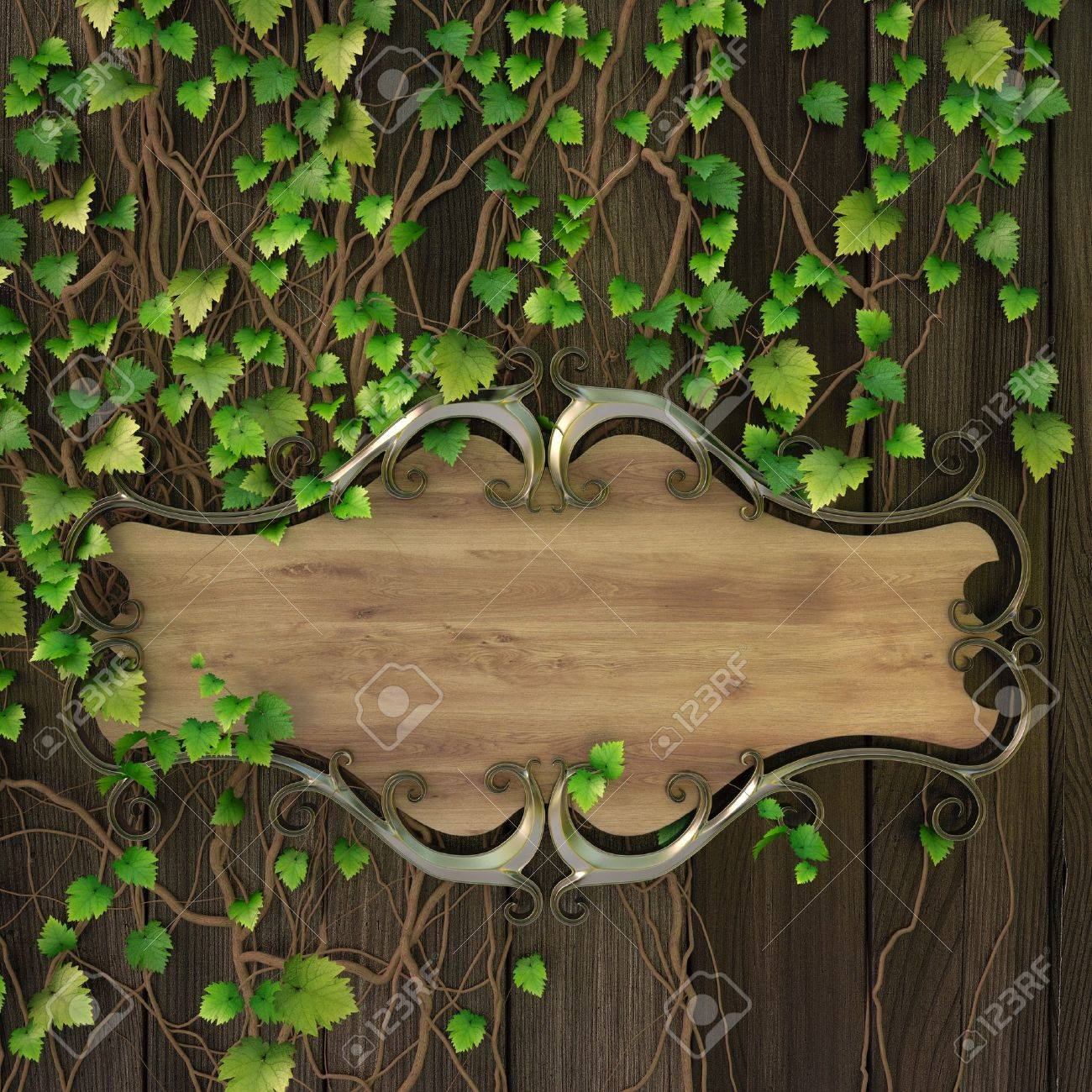 wooden sign on the wall covered with ivy. Stock Photo - 9738426