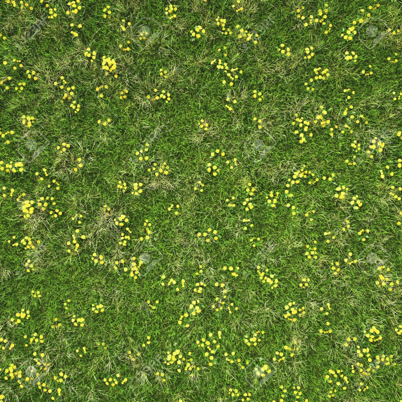 Grass and flowers background Cartoon Green Grass Field With Flowers Background Texture Stock Photo 42614038 123rfcom Green Grass Field With Flowers Background Texture Stock Photo