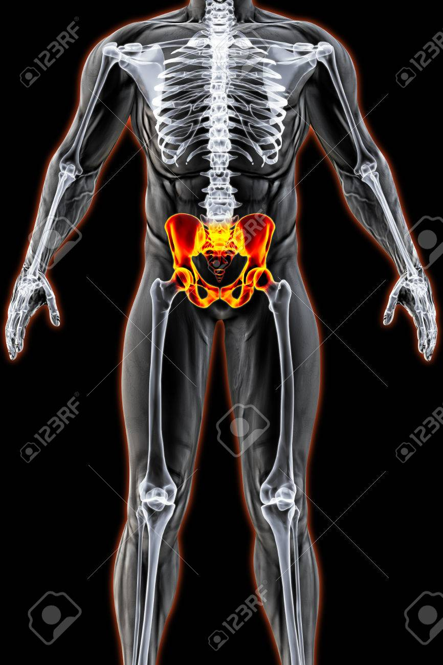Mans Body Under X Rays Pelvis Are Highlighted In Red 3d