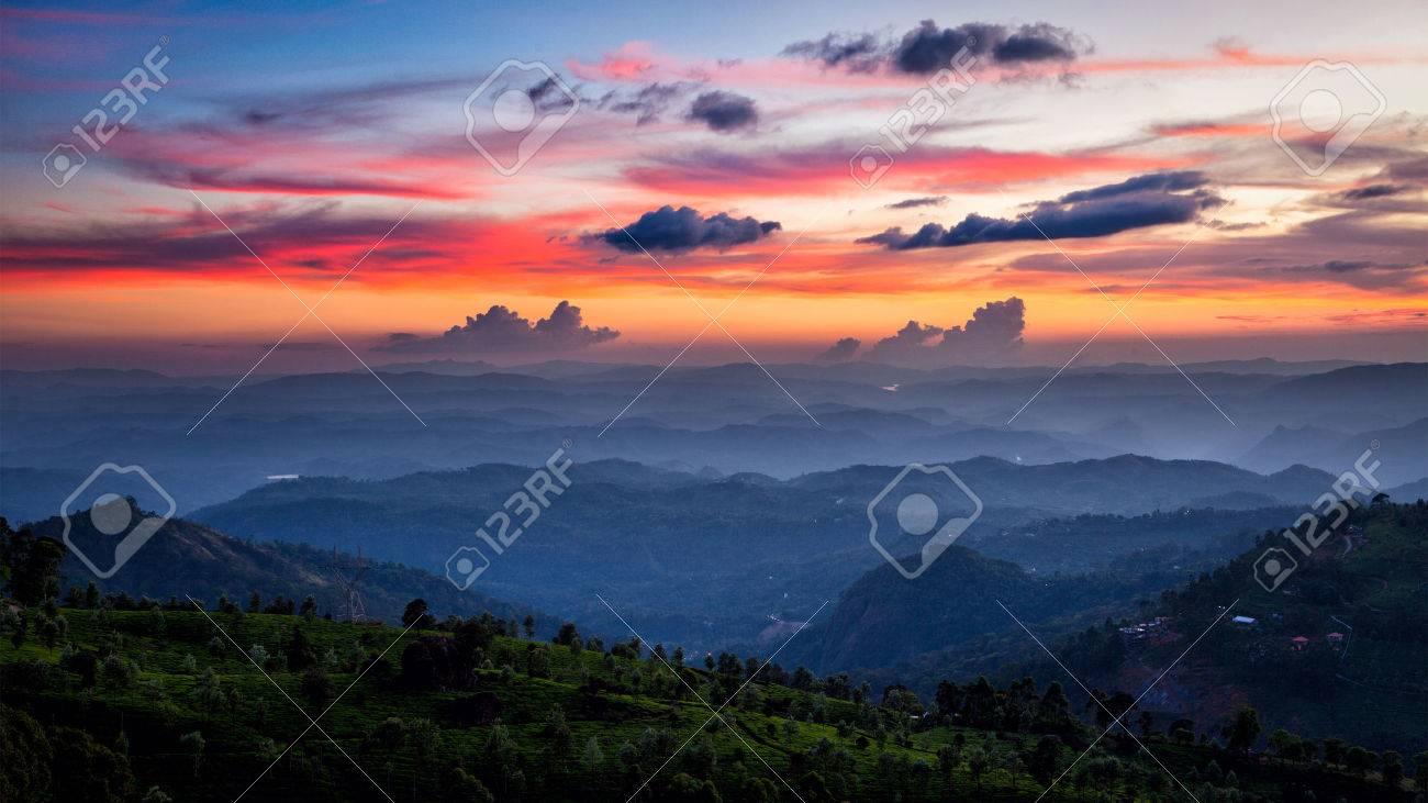 Panorama of sunset in mountains with tea plantations. Munnar, Kerala, India Stock Photo - 47058225