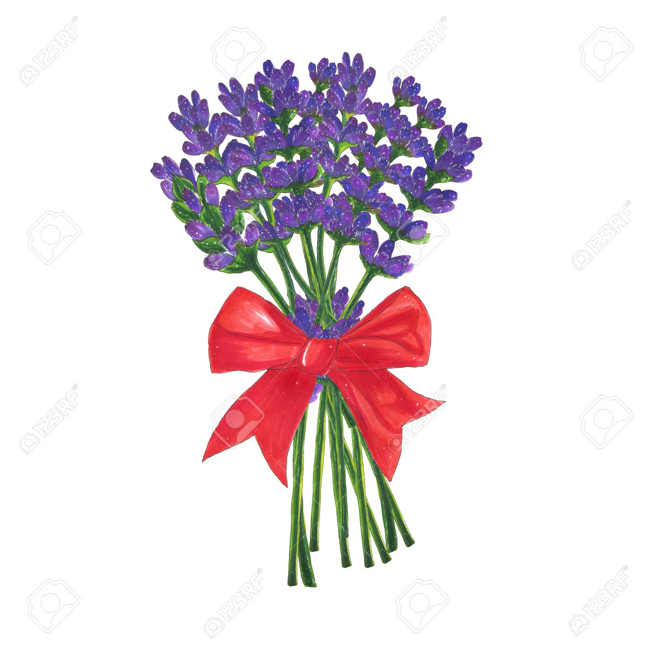 Flowers Bouquet Of Lavender With Red Bow Marker Illustration ...