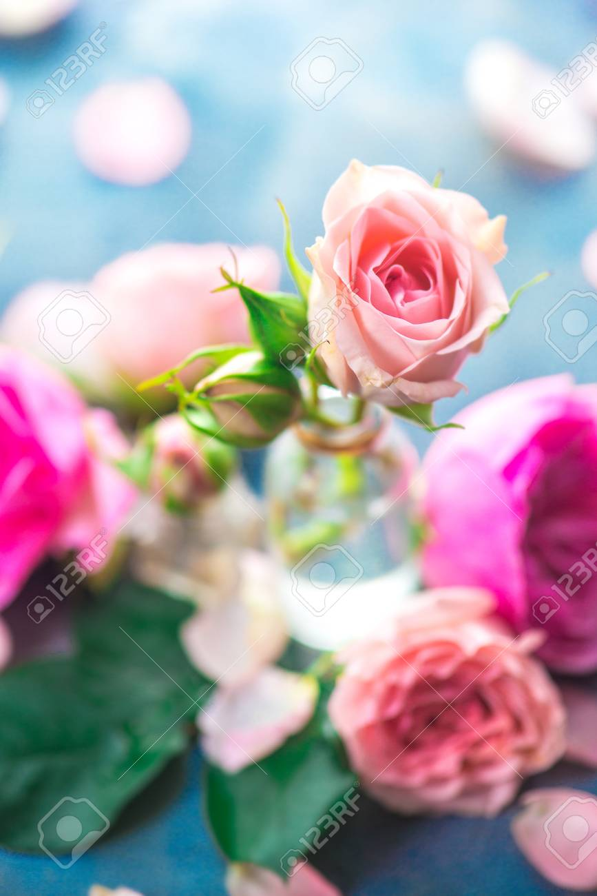 Pink roses in tiny glass bottles on a neutral gray background with copy space. A feminine concept with petals and flowers in pastel tones - 114729997