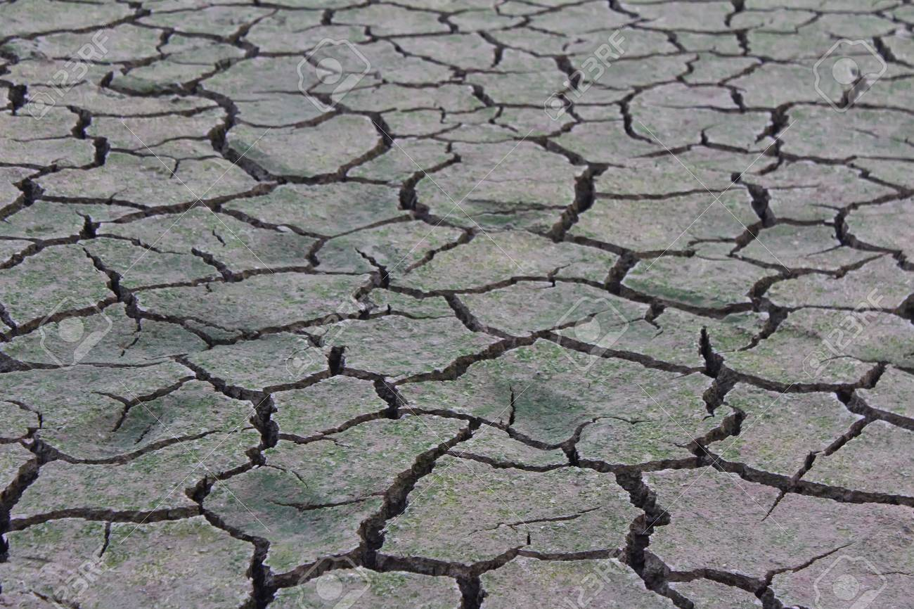 Drought disaster - 41660467
