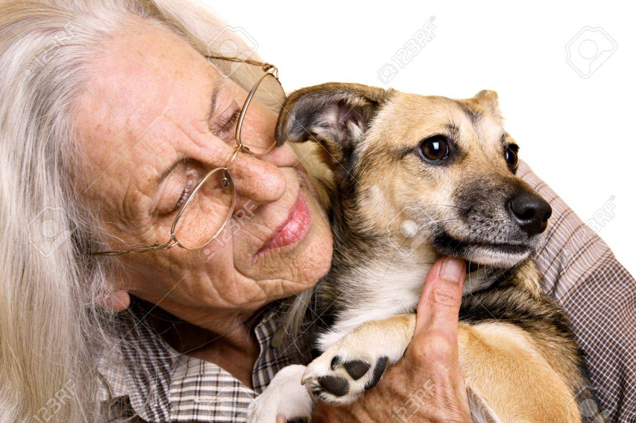 Senior woman with cute mixed breed puppy Stock Photo - 9636387