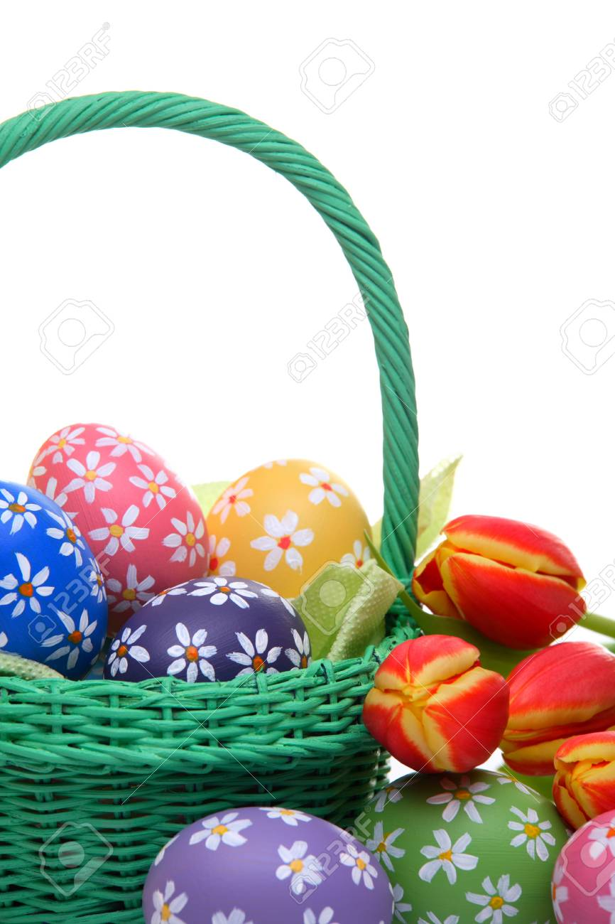 Easter concept with hand painted eggs, green basket and tulips, isolated on white Stock Photo - 12718213