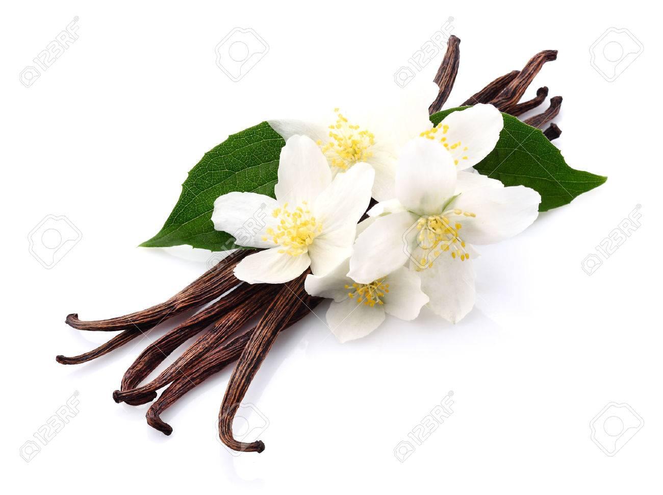 Vanilla with jasmine - 28864063