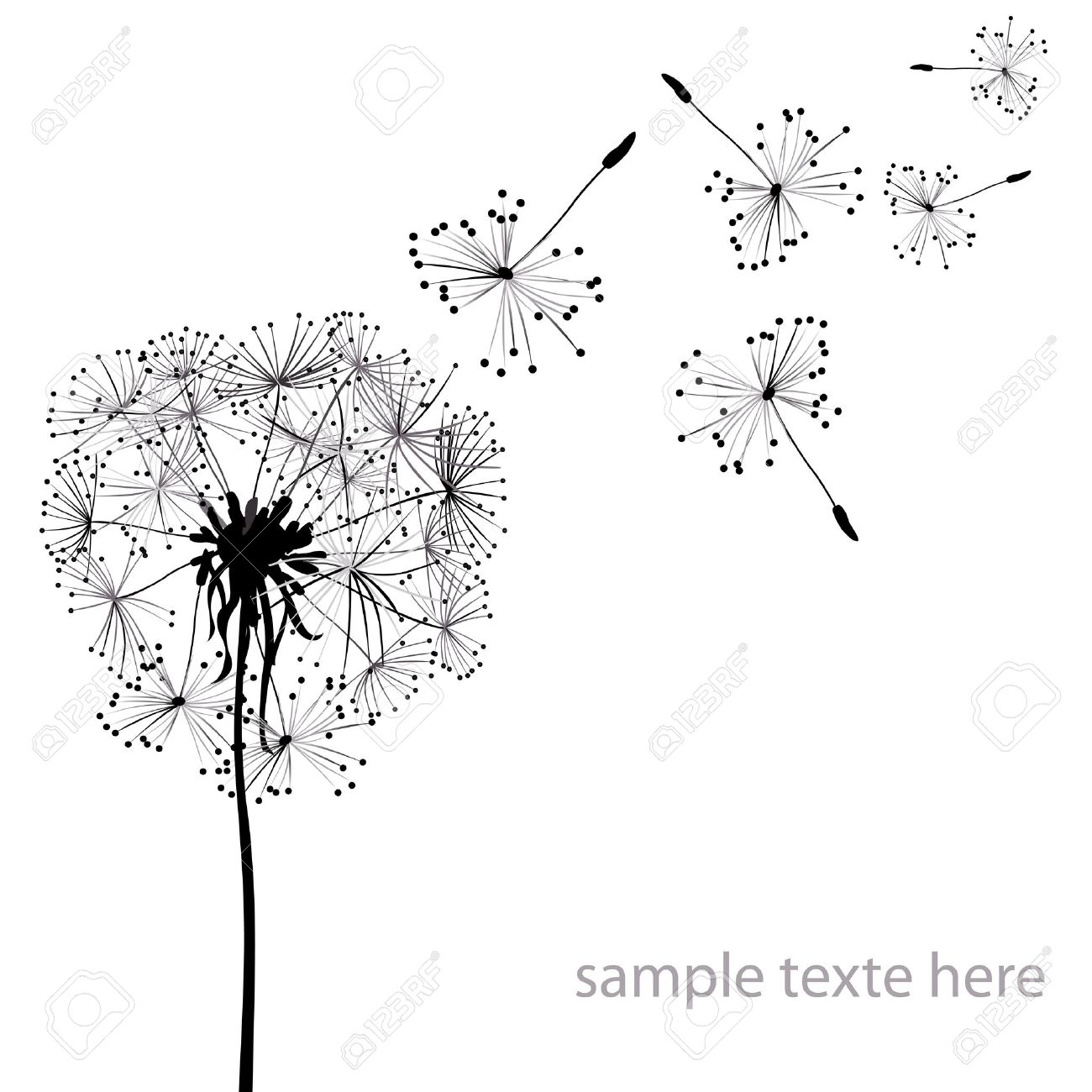 two dandelions in wind on light blue background Stock Photo - 4384971