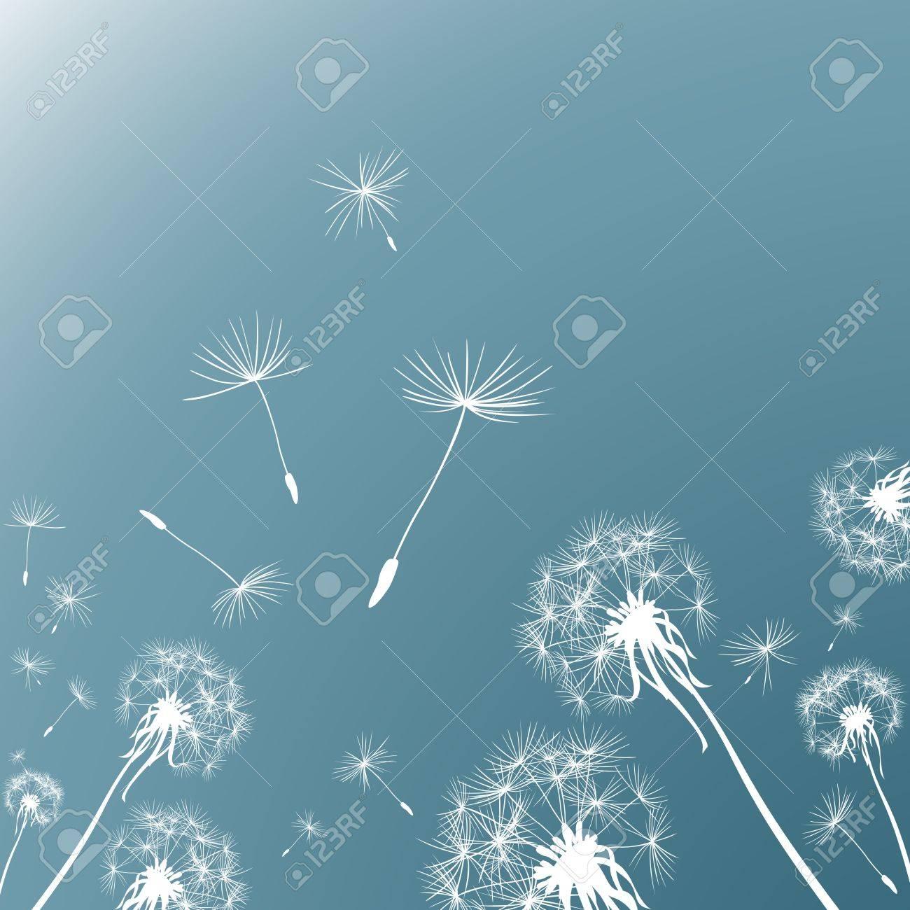 dandelions in the wind - 17476494
