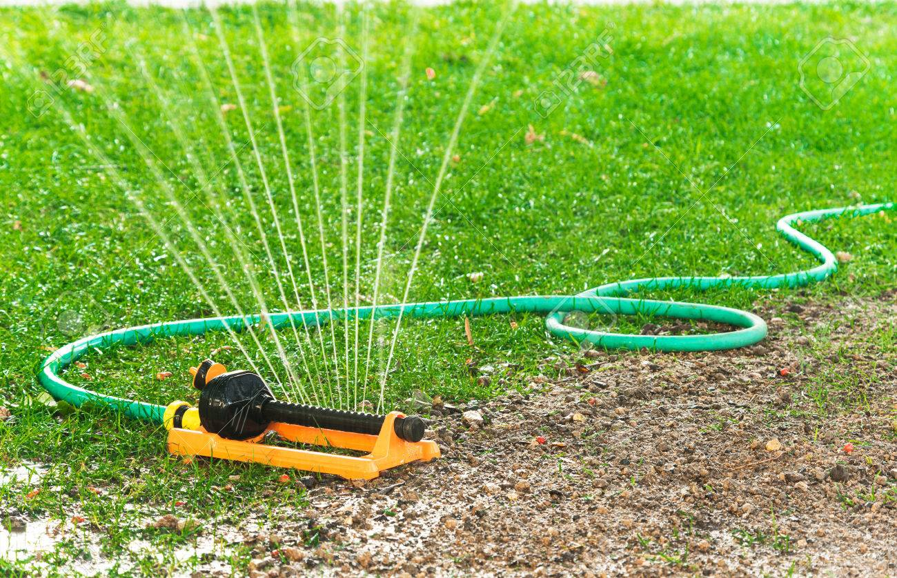 Garden Sprinkler Stock Photo Picture And Royalty Free Image