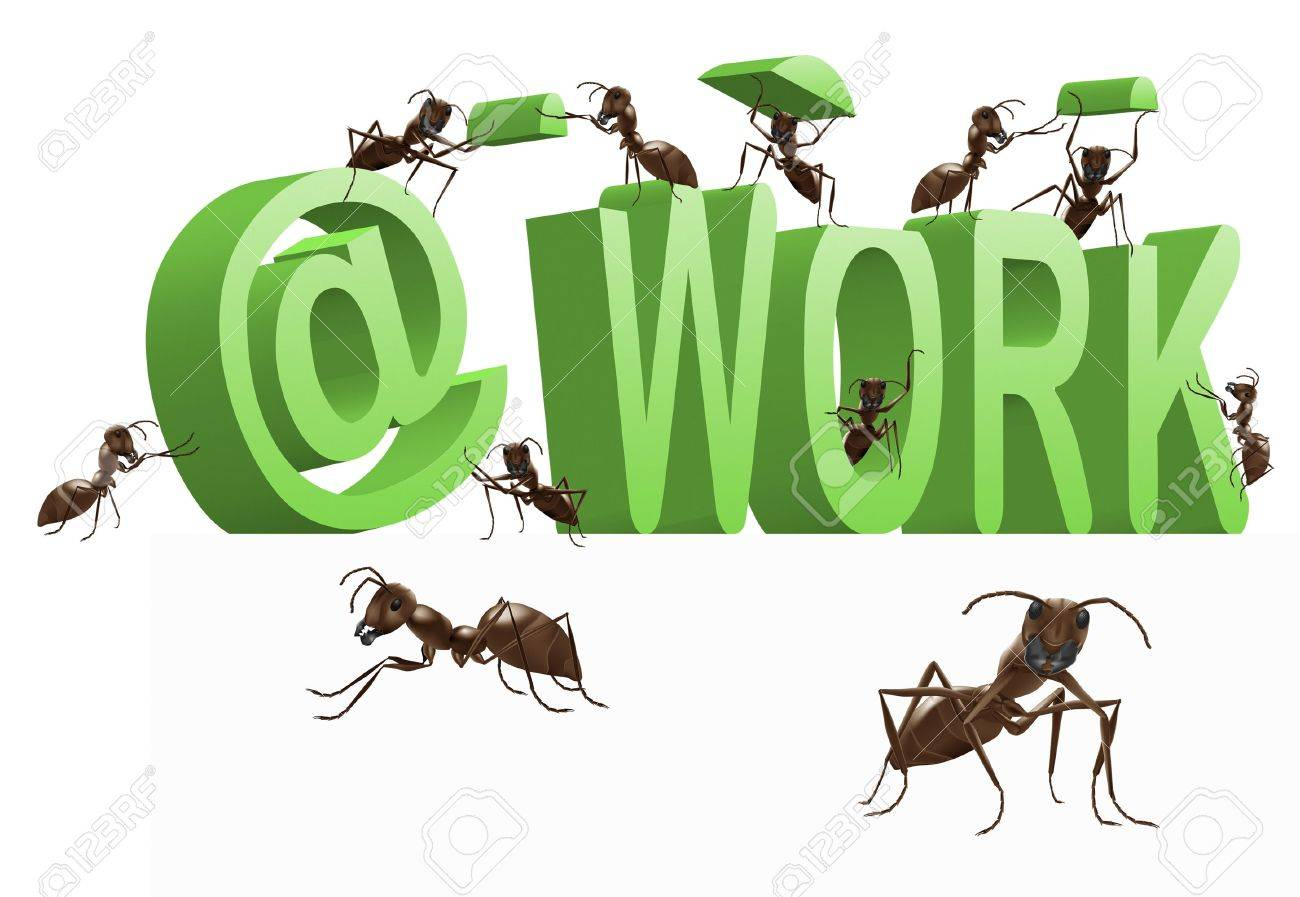 ant working being busy occupied work in progress 3D word with insects building it Stock Photo - 7338104