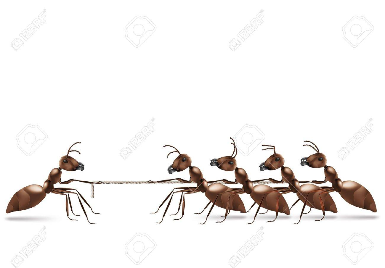 ant rope pulling business advantage or unbalanced fight concept Stock Photo - 8190430