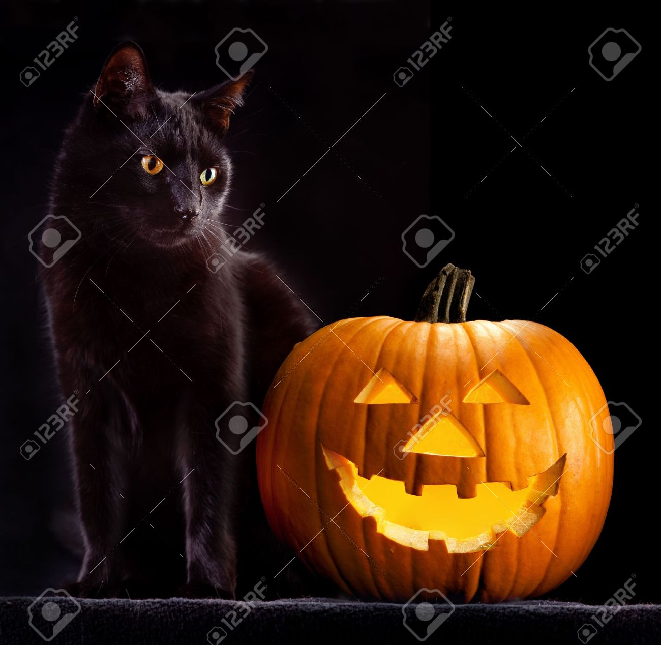 Halloween Cat Stock Photos. Royalty Free Business Images