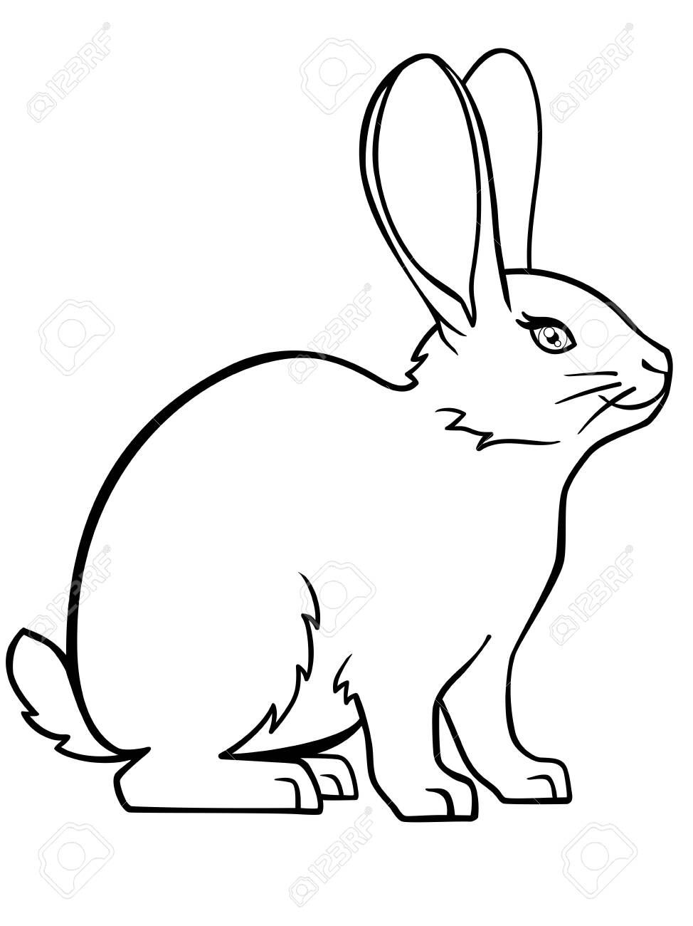 - Cute, Small, Fluffy Rabbit. Easter Bunny. The Pet Is A Decorative