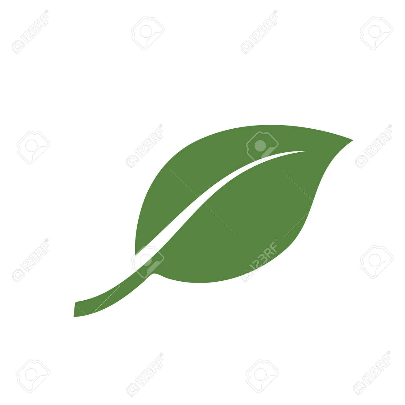 nature green leaf element vector icon. green leaves vector symbol design - 133504501