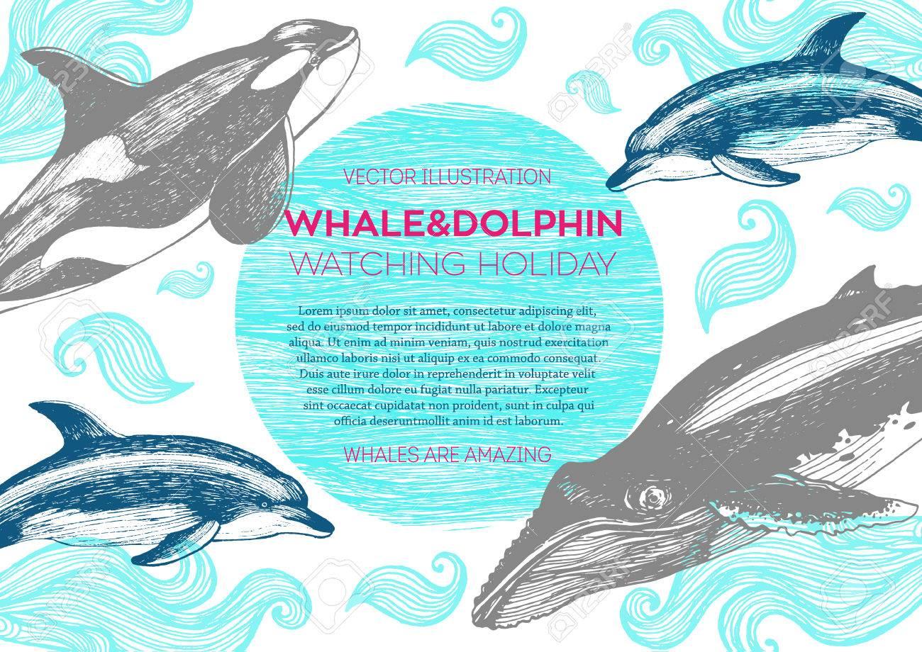 Lujoso Colorear Ballenas Y Delfines Colección - Dibujos Para ...