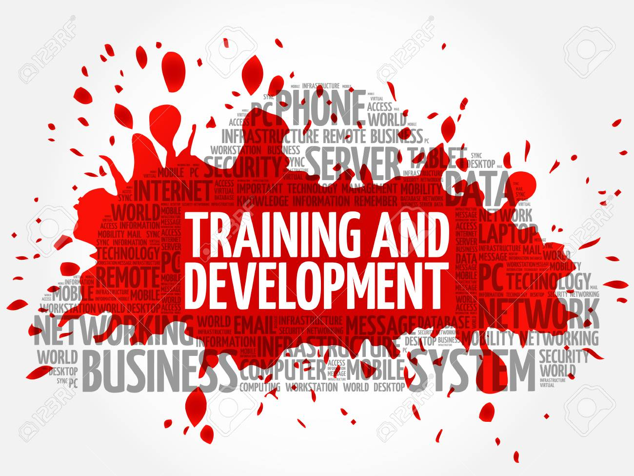 Training and Development word cloud concept