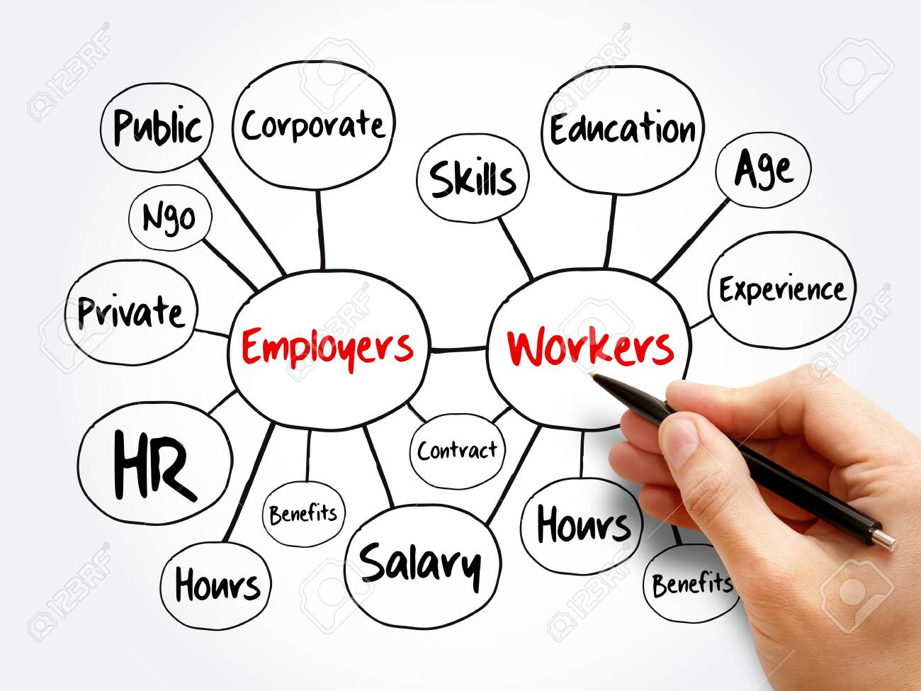 Employers and workers mind map flowchart, business concept for presentations and reports - 147881315