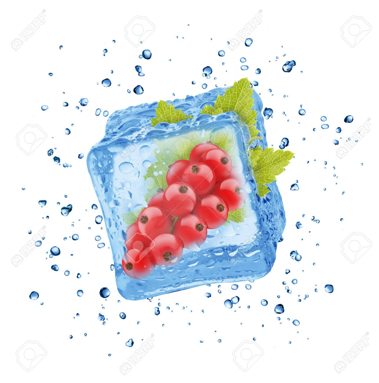 Closeup Red Currant In Ice Cube Stock Picture And Royalty