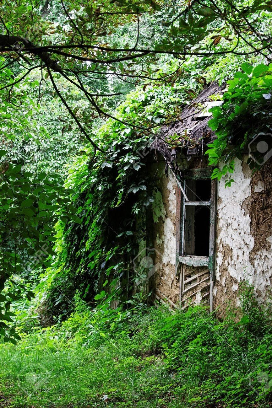 abandoned peasants house - 10395651