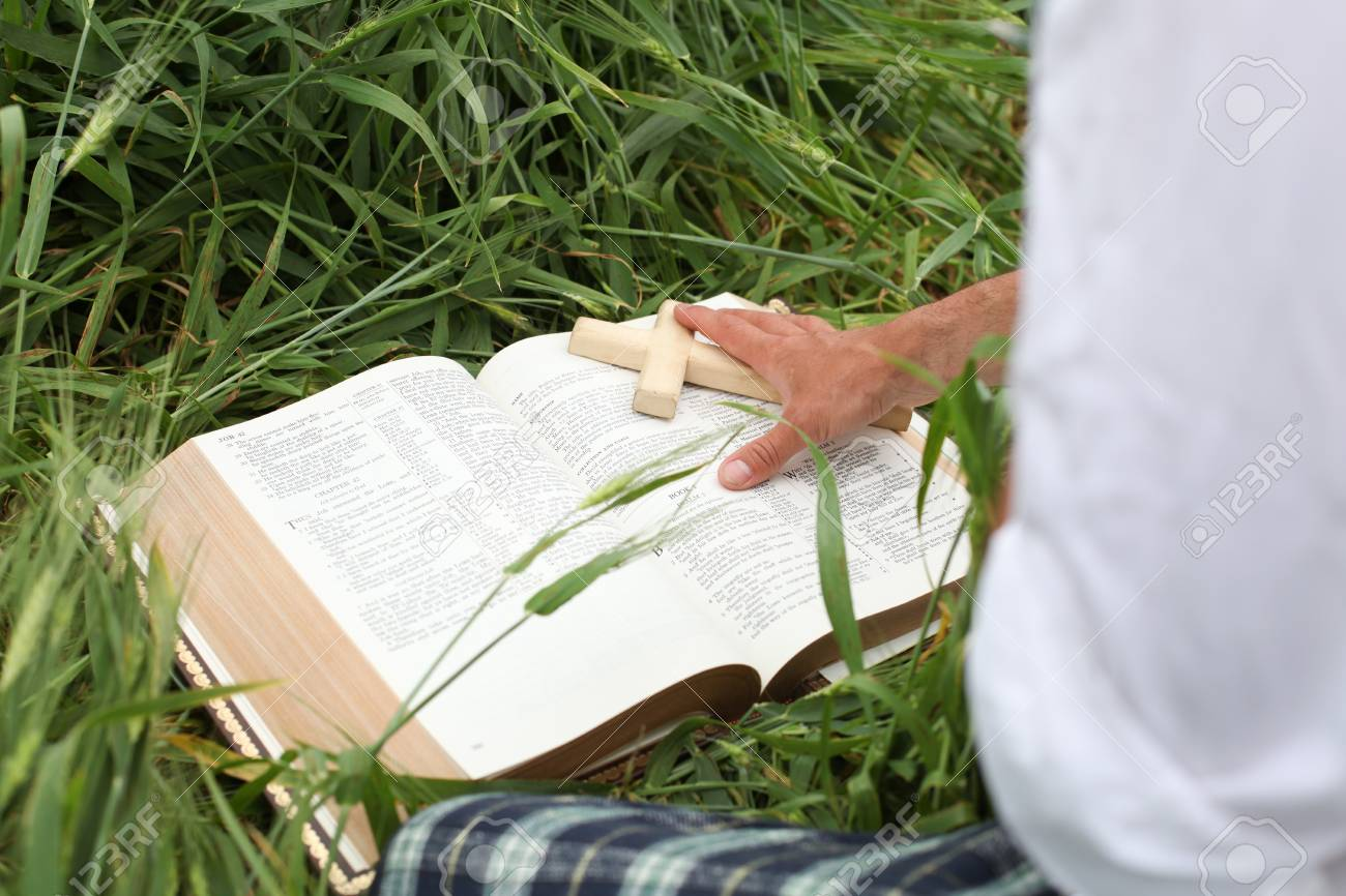 Man reading bible in summer Stock Photo - 15530816