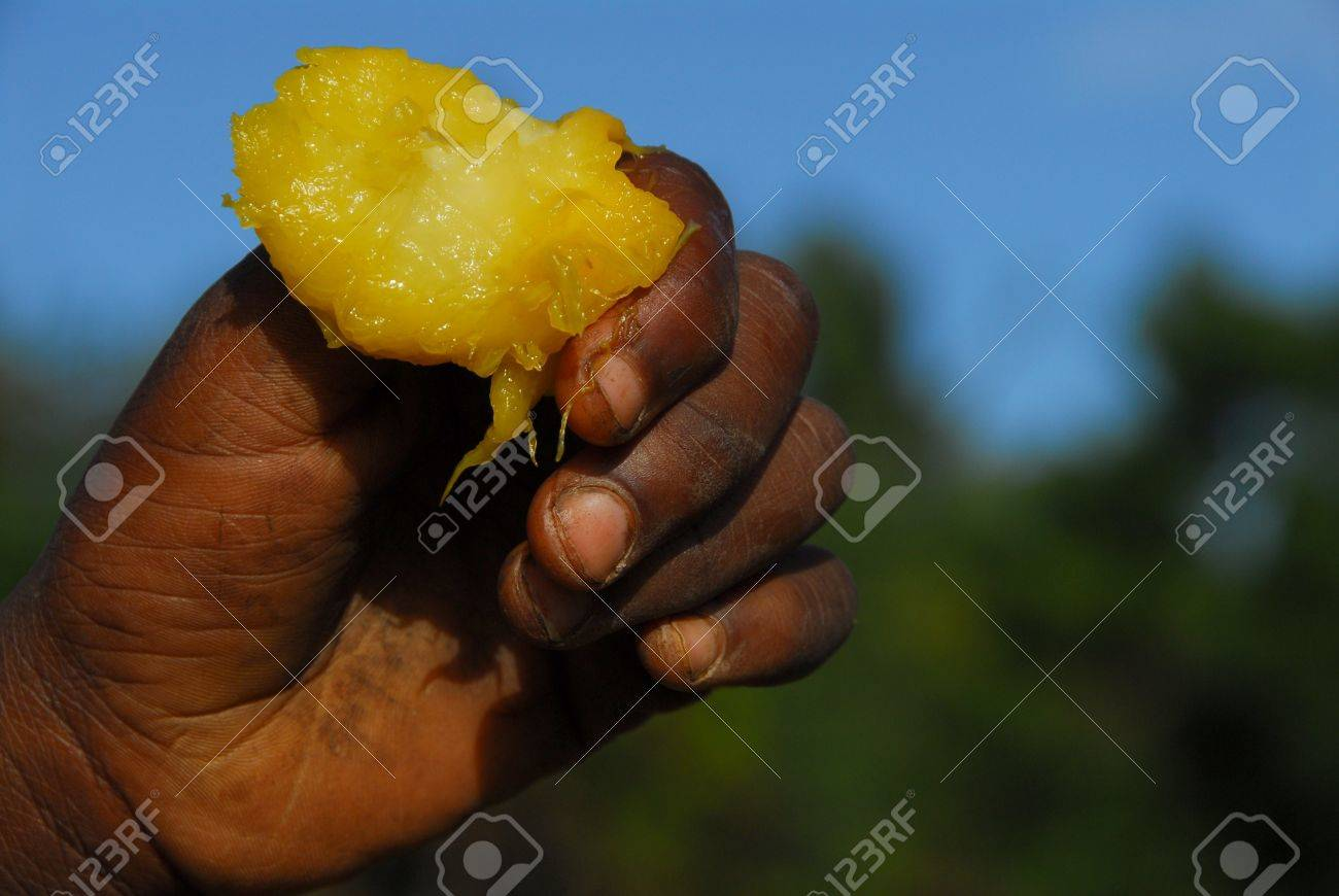 hand of a child African Stock Photo - 6892064