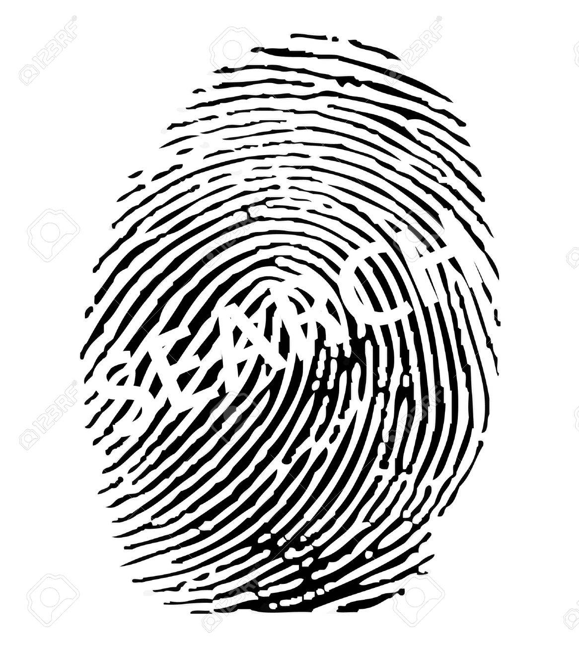 Fingerprint search. Stock Vector - 8273062