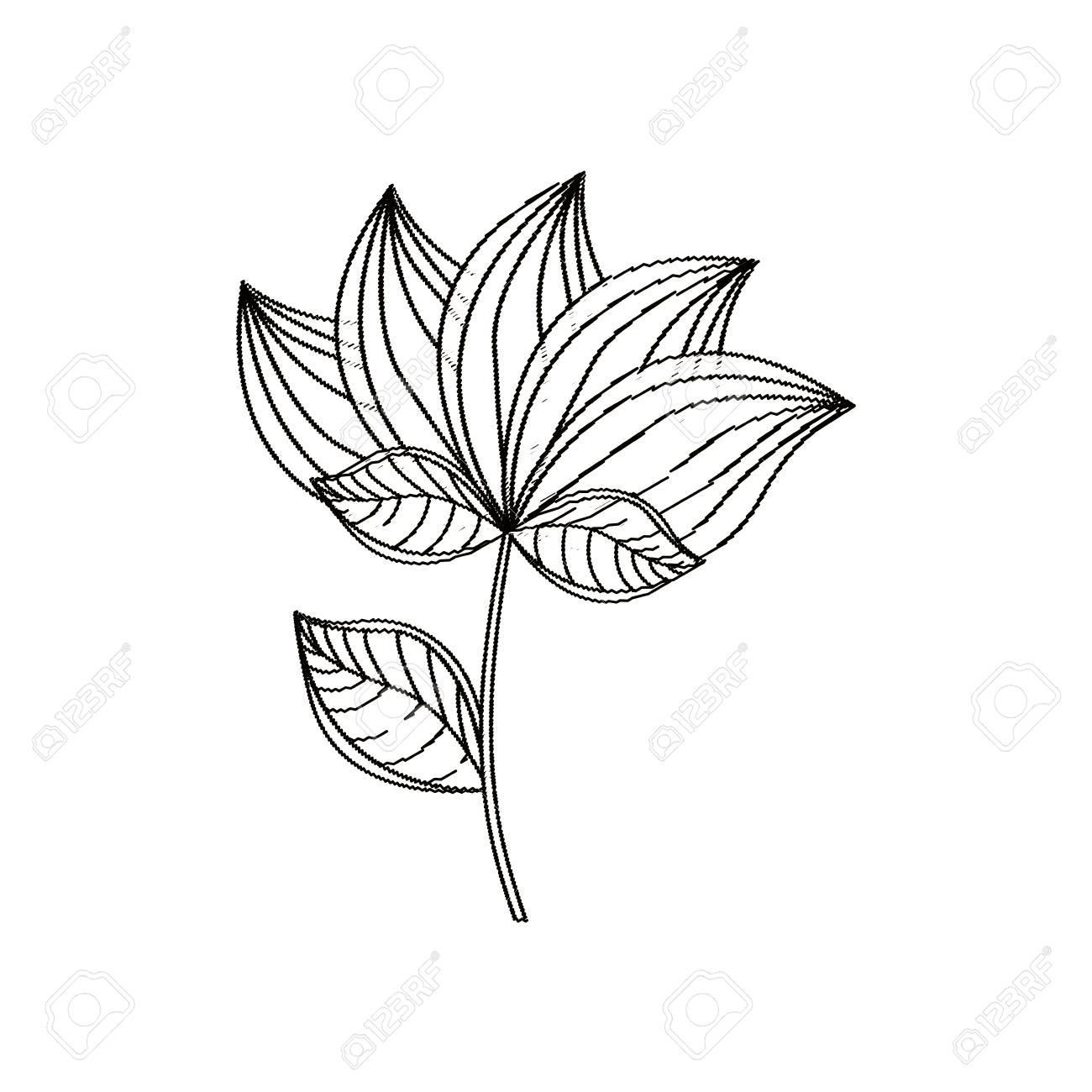 Lotus flower decoration sketch vector illustration eps 10 royalty lotus flower decoration sketch vector illustration eps 10 stock vector 73591448 izmirmasajfo